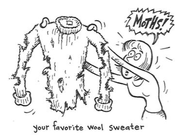 Motten kunnen wol aantasten