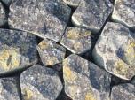 Basaltblokken met korstmossen langs Oostvaarderdijk