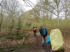 Op weg door de bossen bij Renkum