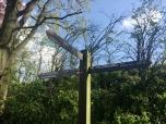 Pelgrimsroute en Krijtlandpad