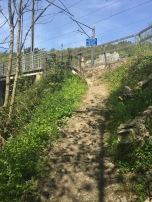 Voetpad naar spoorbrug