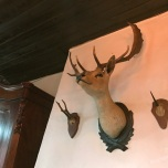 In Het Boshuis staat de kast die toegang geeft tot Narnia