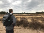 De uitgestrekte Ermelose Heide